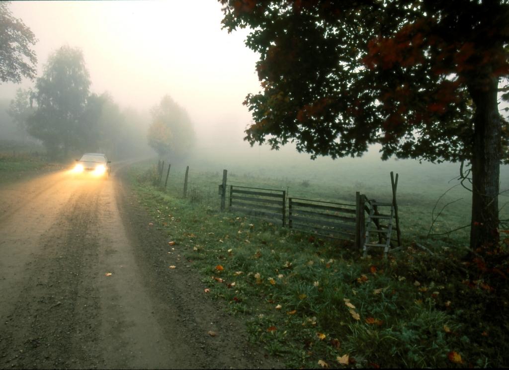 Bil i dimma